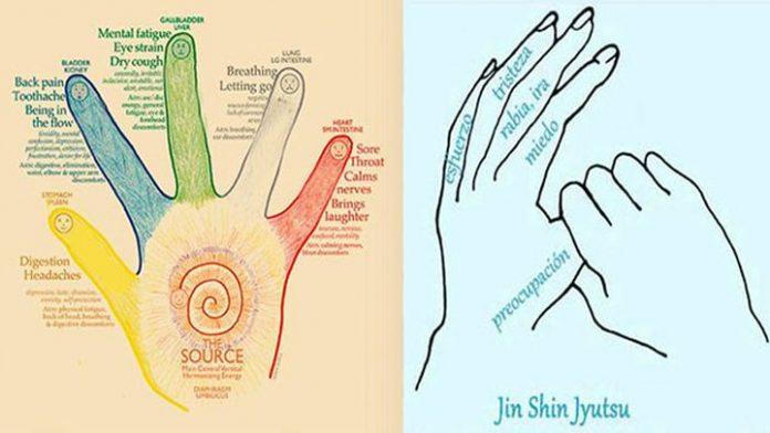 , Cada dedo está vincula por lo menos a 2 órganos – Método japonés para curar en 5 minutos, Alimenta y Cura