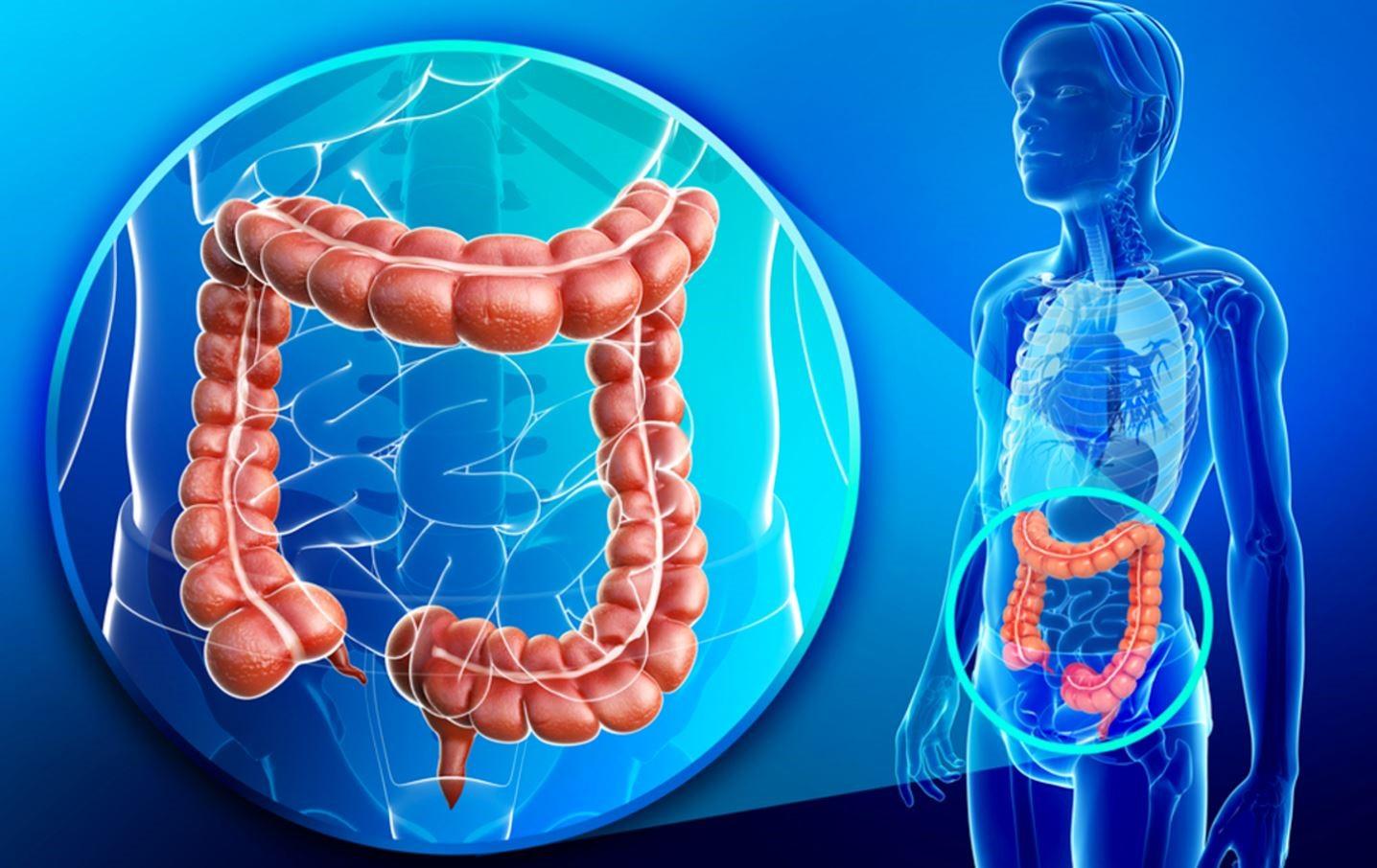 , Como desinflamar el vientre de figura natural limpiando nuestro colon, Alimenta y Cura