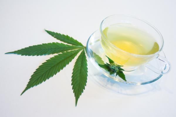 , Cuáles son los beneficios de las semillas de marihuana medicinales, Alimenta y Cura, Alimenta y Cura