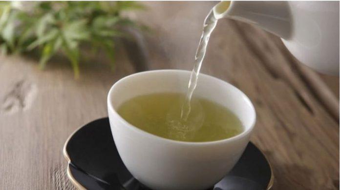 , El misterio del té verde: qué lo hace un efectivo protector contra el Alzheimer, Alimenta y Cura