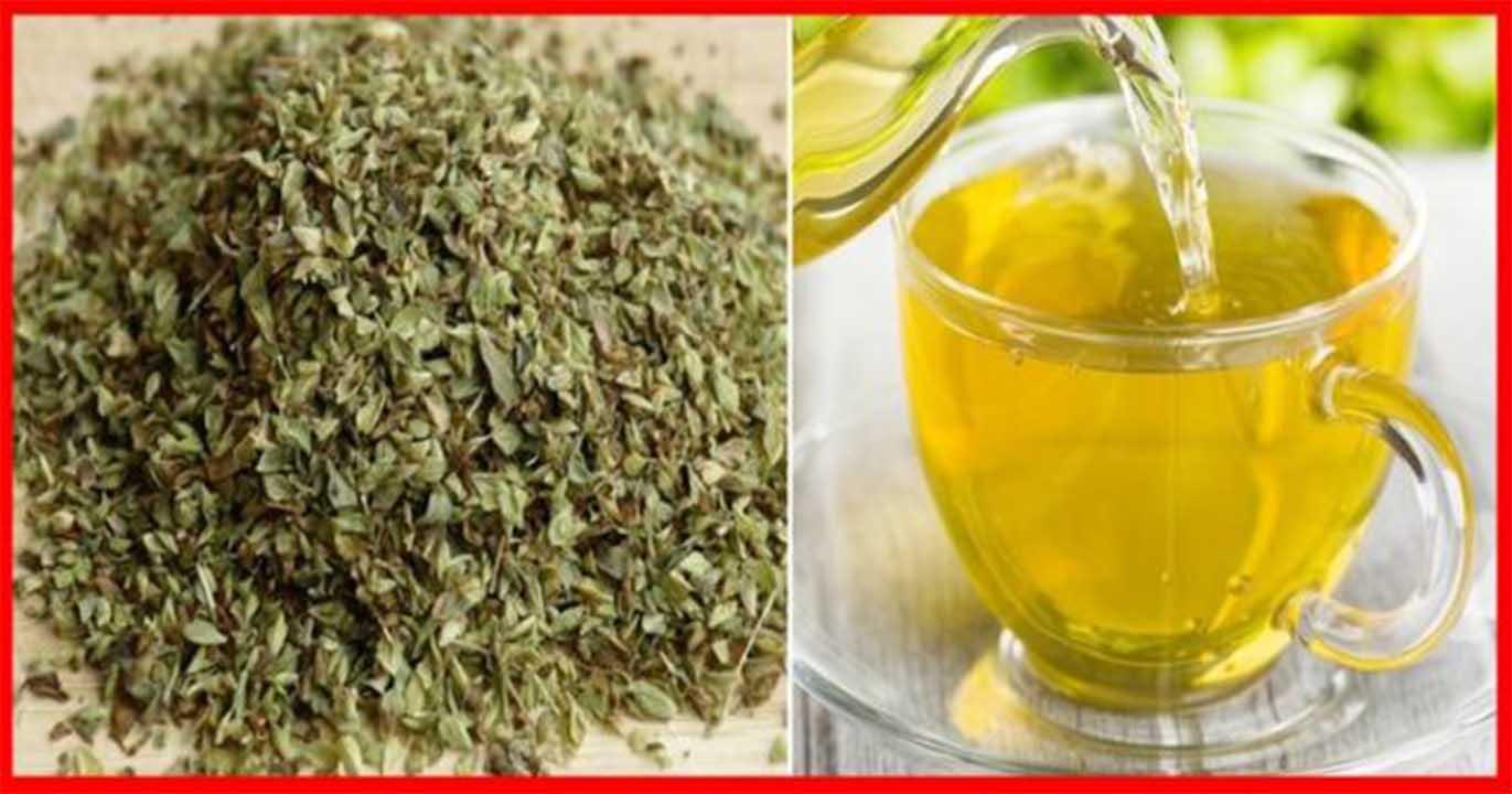 , Usos medicinales y aplicaciones curativas del orégano, Alimenta y Cura, Alimenta y Cura