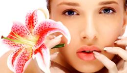 , Todo sobre el Aceite de Rosa Mosqueta, Alimenta y Cura, Alimenta y Cura
