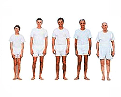 , Alimentación del Adulto 18 a 40 años, Alimenta y Cura