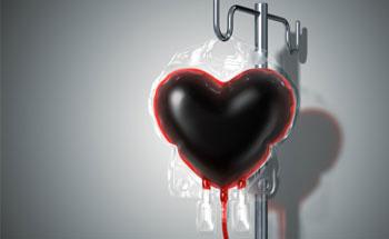 , Alimentación según el grupo sanguíneo, Alimenta y Cura