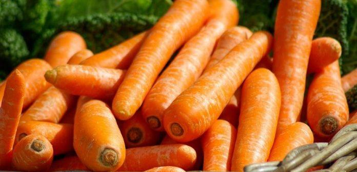 , Alimentos ricos en vitamina A, Alimenta y Cura
