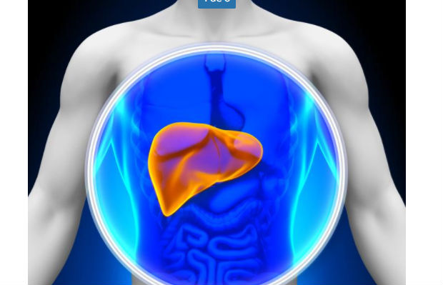 , Cómo curar el hígado graso de forma natural, Alimenta y Cura, Alimenta y Cura