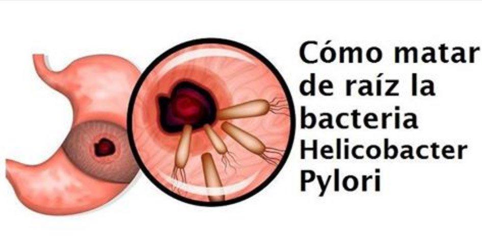 , Cómo eliminar de raíz la bacteria Helicobacter pylori naturalmente, Alimenta y Cura, Alimenta y Cura