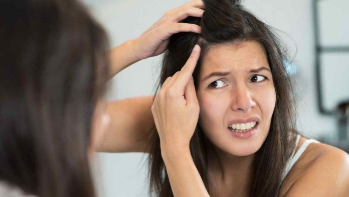 , Elimina las canas de tu cabello para siempre en solo 1 día con este truco casero., Alimenta y Cura