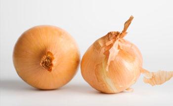 , La cebolla, Alimenta y Cura