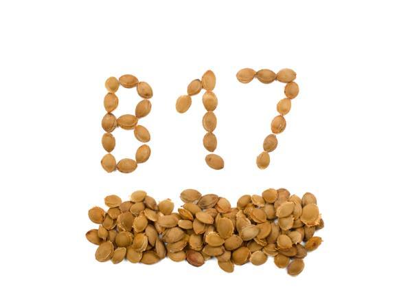, La vitamina b17 está prohibida por que elimina las células cancerígenas y destruye cualquier tumor maligno, Alimenta y Cura, Alimenta y Cura