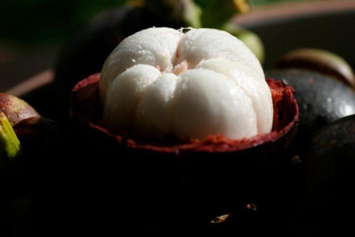 , Mangostán para adelgazar, Alimenta y Cura, Alimenta y Cura