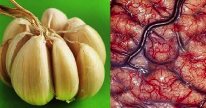 , Mira lo que le ocurre a tu cuerpo si comes AJO todos los días, Alimenta y Cura