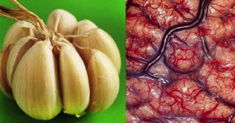 , Mira lo que le ocurre a tu cuerpo si comes AJO todos los días, Alimenta y Cura, Alimenta y Cura
