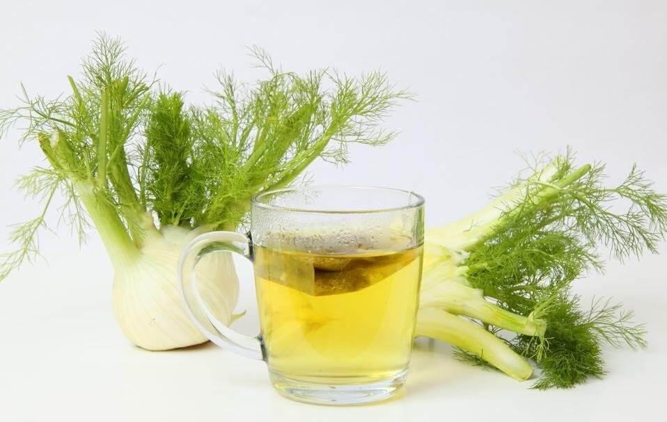 , 3 beneficiosas infusiones de hinojo para perder peso, Alimenta y Cura, Alimenta y Cura