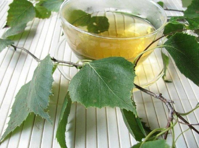 , 5 infusiones diuréticas para eliminar líquidos, Alimenta y Cura