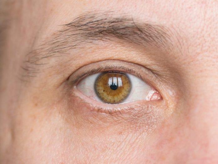 , 5 Trucos para tener la vista de un lince y evitar perderla con el paso del tiempo, Alimenta y Cura