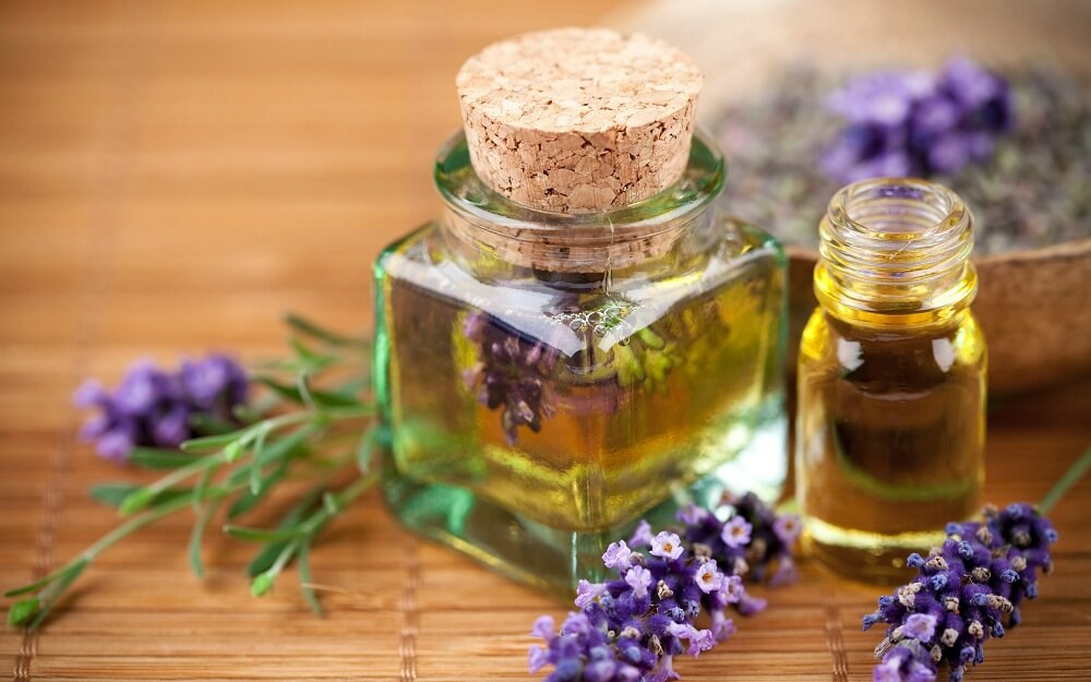 , 8 remedios naturales para calmar las picaduras de abeja, Alimenta y Cura, Alimenta y Cura