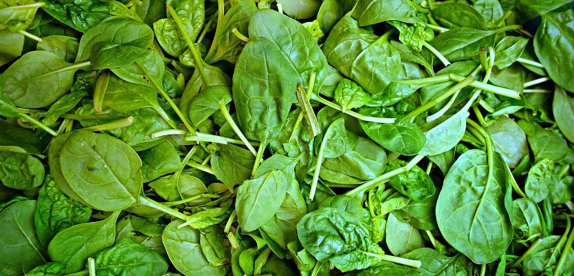 , Alimentos ricos en oxalatos, Alimenta y Cura, Alimenta y Cura