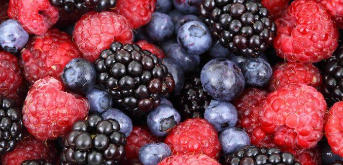 , Alimentos ricos en oxalatos, Alimenta y Cura