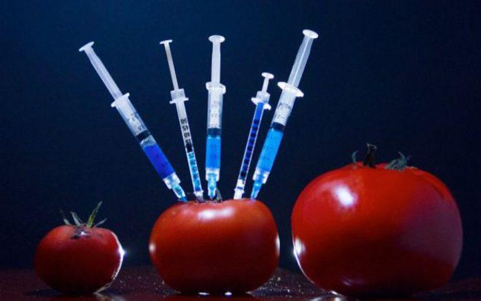 , Aprende a identificar alimentos transgénicos por sucódigo, Alimenta y Cura