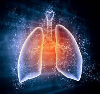 , Primeras evidencias de la relación entre asma y ácidos grasos, Alimenta y Cura