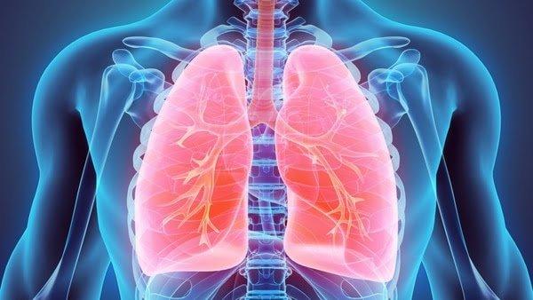 Los pulmones tienen una función que excede respirar (iStock)