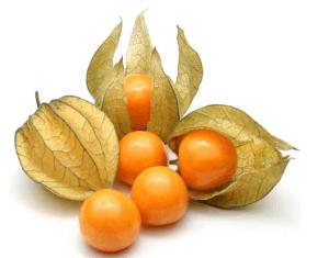 , Golden Berries: cura la próstata, combate el estreñimiento y previene el cáncer de estómago, colon e intestino. ¡Comparte alguien lo puede necesitar!, Alimenta y Cura, Alimenta y Cura