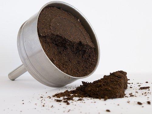 , No vuelvas a tirar el café utilizado a la basura, mira las siete maneras en las que puedes reutilizarlo en casa, Alimenta y Cura