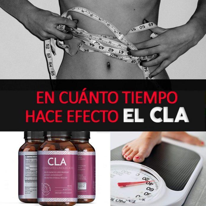 , ¿En Cuánto Tiempo Hace Efecto El CLA?, Alimenta y Cura