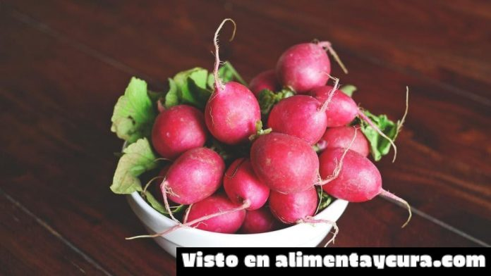 , Propiedades y beneficios de los rábanos, Alimenta y Cura, Alimenta y Cura