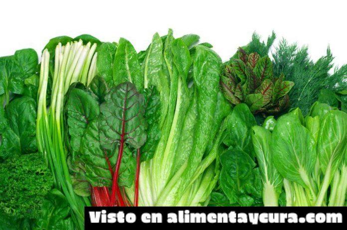 , Beneficios de las plantas para el cerebro, Alimenta y Cura