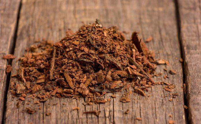 , La corteza de sauce, un remedio perfecto para el organismo, Alimenta y Cura