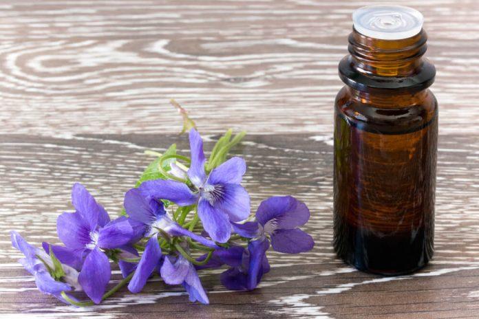 , La terapia de las flores de Bach de manera sencilla, Alimenta y Cura