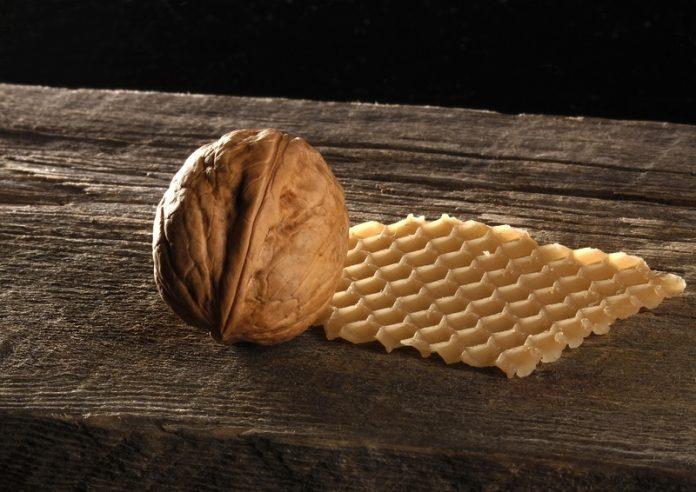 , Pequeño pero poderoso: 12 Utilidades de introducir nueces inglesas en tu dieta, Alimenta y Cura
