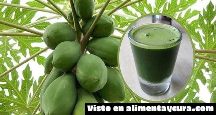 , Aprende como preparar este jugo de hojas de papaya para desintoxicar el hígado, revertir el hígado graso y mucho más, Alimenta y Cura, Alimenta y Cura