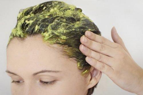 , Hidrata tu cabello seco con estos 5 remedios naturales, Alimenta y Cura