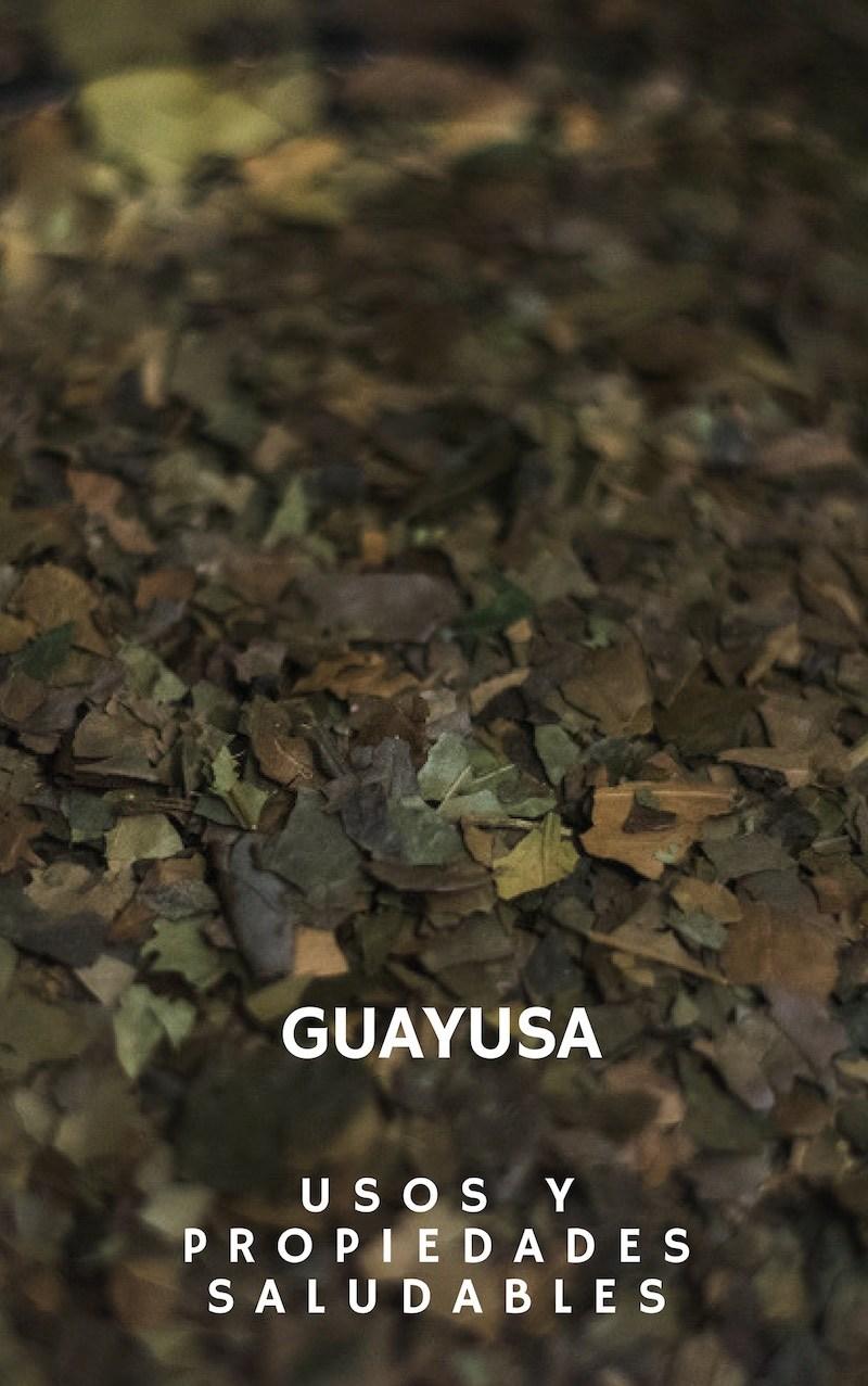 , Cualidades, Utilidades y usos de la Guayusa, Alimenta y Cura