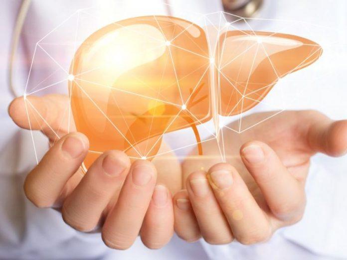 , Qué comer para tener un hígado saludable, Alimenta y Cura