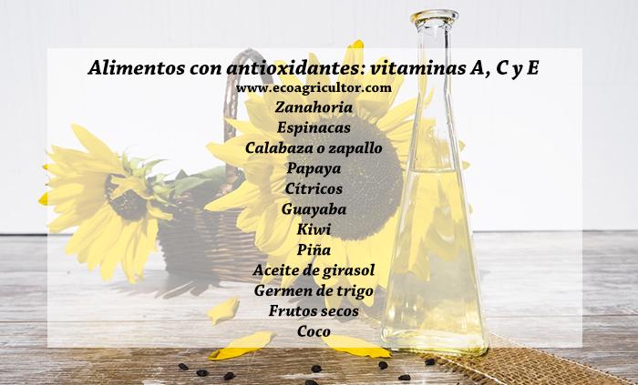 , Antioxidantes: qué son, funciones y mejores alimentos ricos en antioxidantes, Alimenta y Cura, Alimenta y Cura