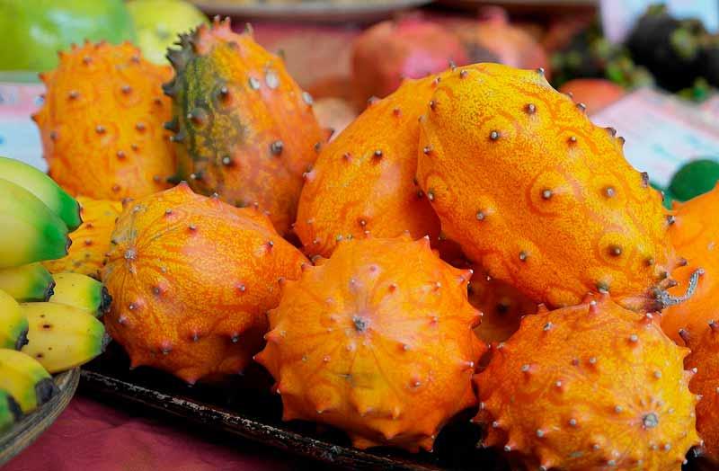 , El kiwano: una fruta exótica que no puedes dejar de probar, Alimenta y Cura, Alimenta y Cura