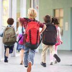 Descubren que los productos químicos agrícolas reducen el coeficiente intelectual de los niños