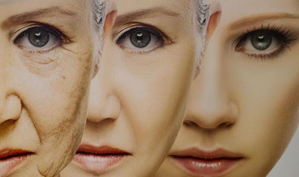 , Anti-envejecimiento INICIO: Droga PARA REVERTIR el envejecimiento en el sistema inmune, Alimenta y Cura
