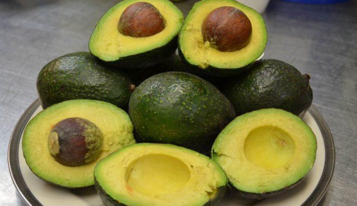 , Estos son los mejores alimentos para estabilizar la glucosa, Alimenta y Cura, Alimenta y Cura