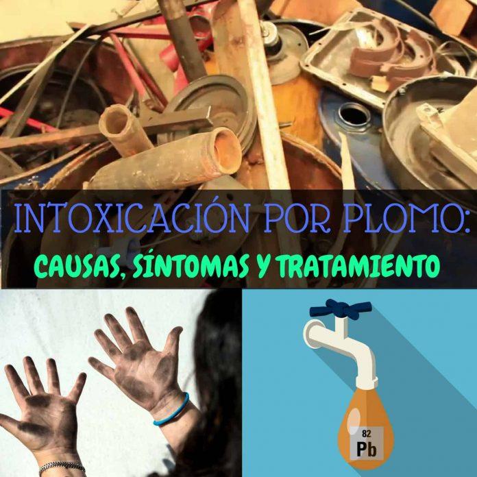 , Intoxicación Por Plomo: Causas, Síntomas Y Tratamiento, Alimenta y Cura