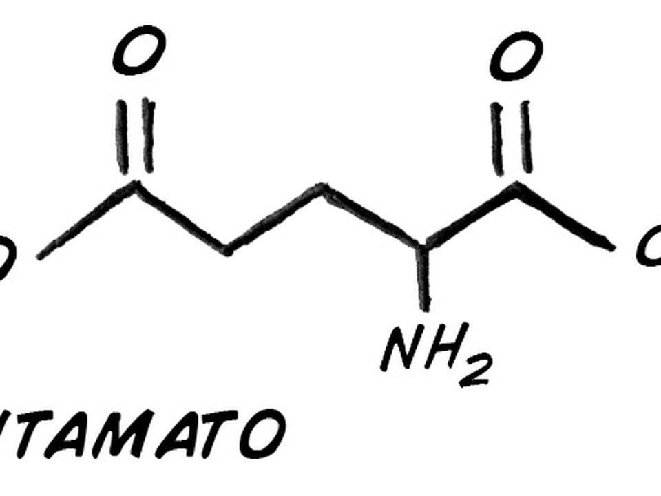 , Efectos del Glutamato Monosódico ¡Más peligroso que la sal y el azúcar!, Alimenta y Cura, Alimenta y Cura