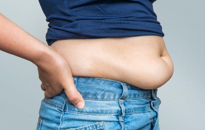 , Los principales mitos sobre las hormonas y el sobrepeso, Alimenta y Cura