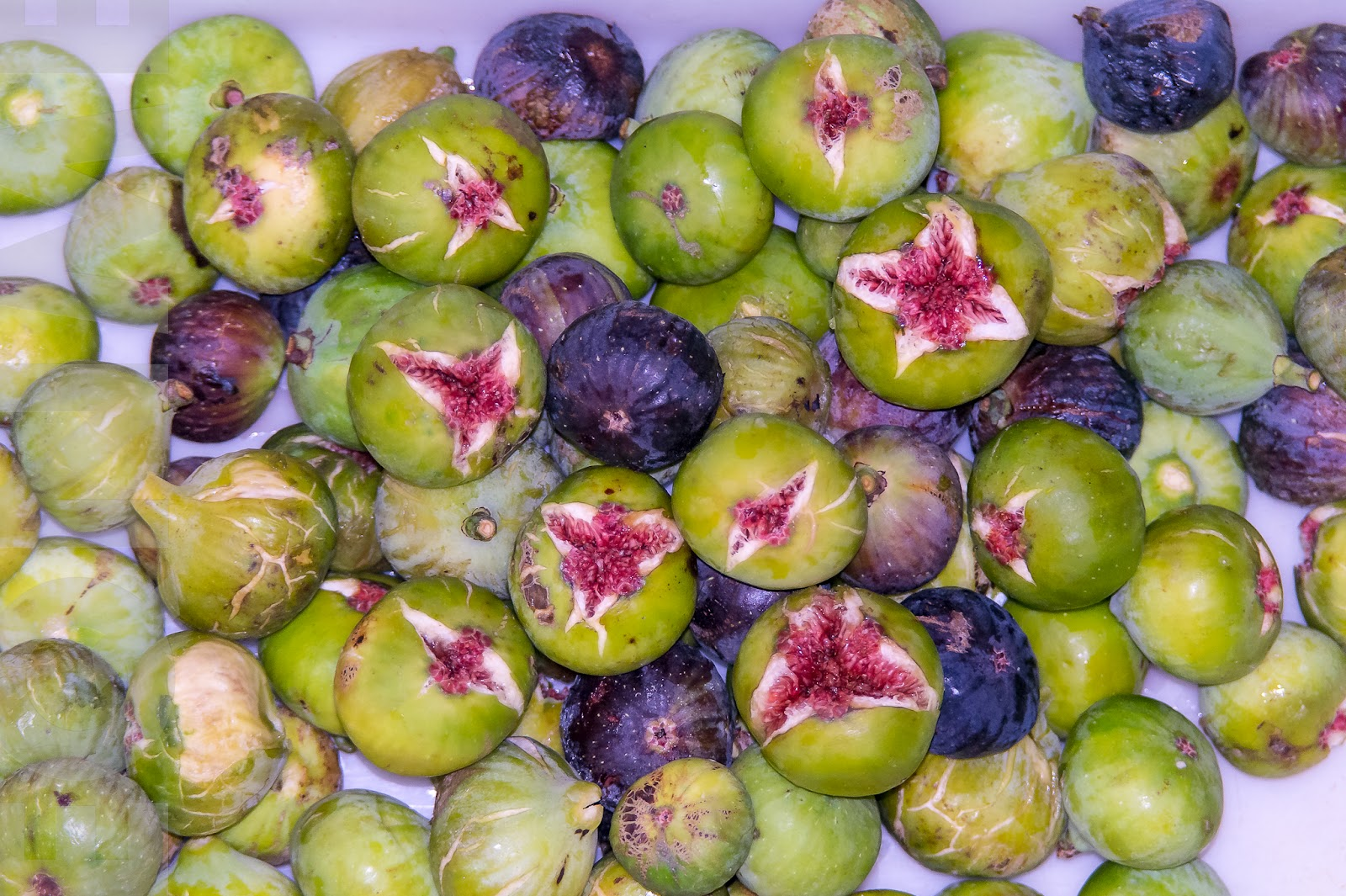 , La higuera, los beneficios de la única planta que da 2 frutos diferentes en el mismo año., Alimenta y Cura