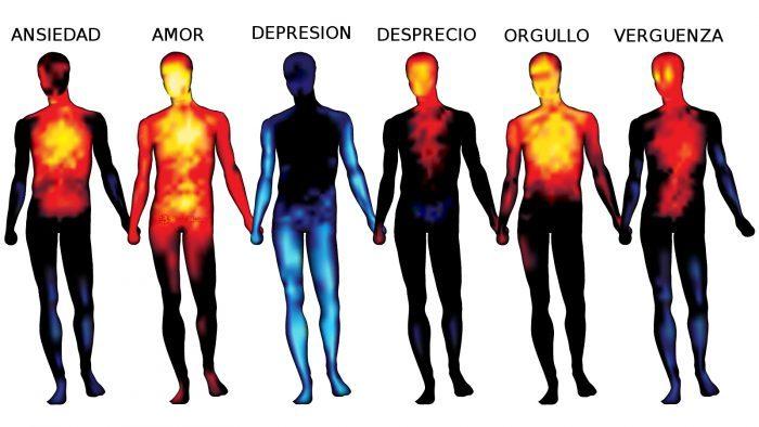 , Relacion entre las emociones y la enfermedad, Alimenta y Cura