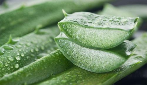 , Este Remedio alivia Las Hemorroides En Solo 24 Horas., Alimenta y Cura