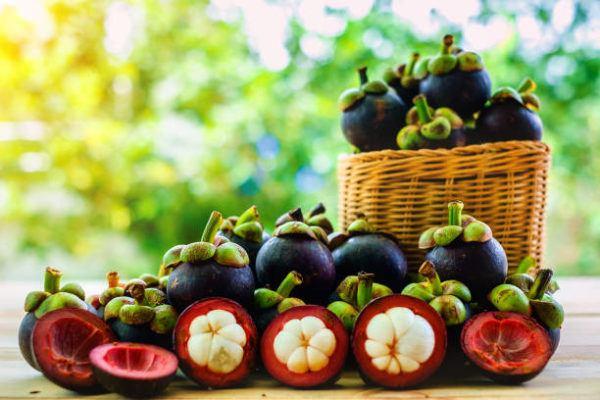 , ¿Que es el Mangostan? propiedades, beneficios, contraindicaciones y donde comprar, Alimenta y Cura, Alimenta y Cura